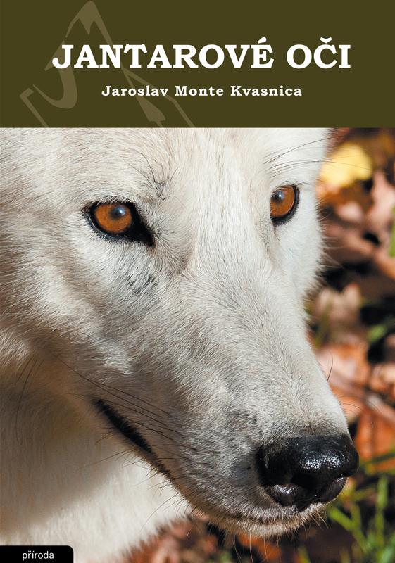 Obálka knihy Jantarové oči
